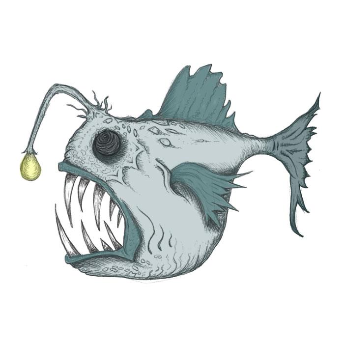 Anglerfish drawing