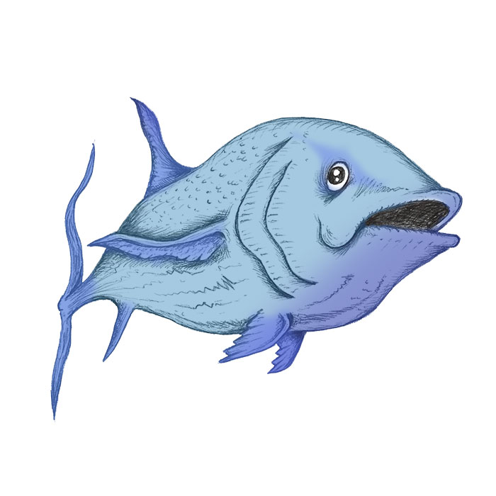 Blue fish drawing