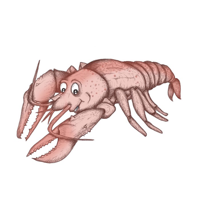 Lobster cartoon drawing
