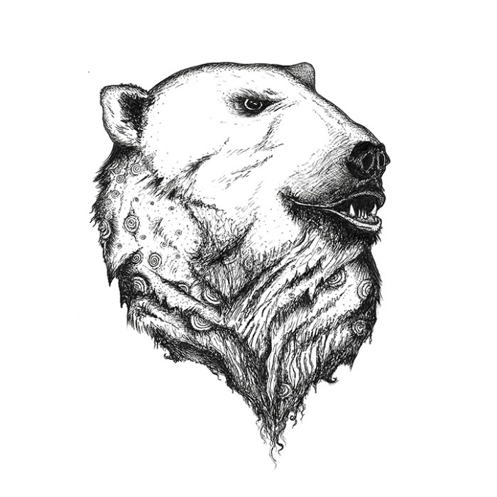 Polar bear pen sketch