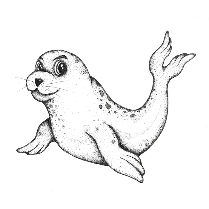 Seal pup drawing
